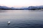 Lucerna, Suiza | Anna Port Photography6