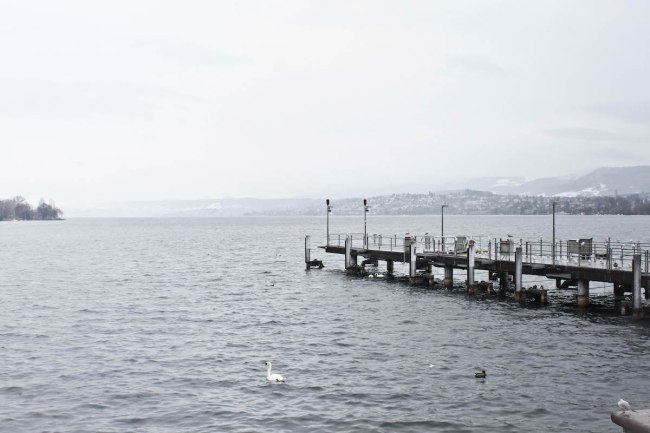 Zurich, Suiza | Anna Port Photography5