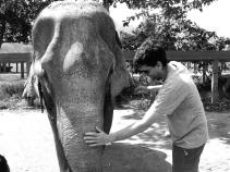 Elephant Nature Park, Tailandia | Descubriendo el mundo con Anna10