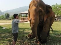 Elephant Nature Park, Tailandia | Descubriendo el mundo con Anna14
