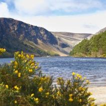 Wicklow & Glendalough, Irlanda   Descubriendo el mundo con Anna11