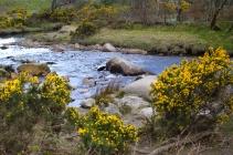 Wicklow & Glendalough, Irlanda | Descubriendo el mundo con Anna14