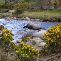 Wicklow & Glendalough, Irlanda   Descubriendo el mundo con Anna14