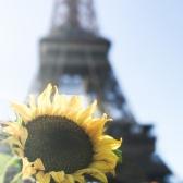 Paris, France | Descubriendo el mundo con Anna22