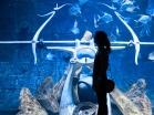 Atlantis Palm, Dubai   Descubriendo el mundo con Anna12