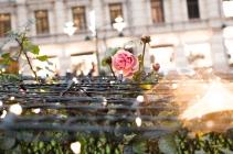Esplanadi, Helsinki | Descubriendo el mundo con Anna3