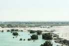 Abu Dhabi   Anna Port Photography18