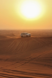 Desert Al Ain | Anna Port Photography7