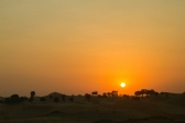 Desert Al Ain | Anna Port Photography9