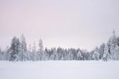 Lapland | Descubriendo el mundo con Anna15
