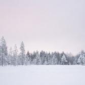 Lapland   Descubriendo el mundo con Anna15