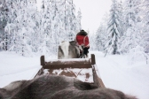 Lapland | Descubriendo el mundo con Anna20