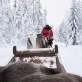 Lapland   Descubriendo el mundo con Anna20
