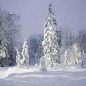 Lapland   Descubriendo el mundo con Anna26