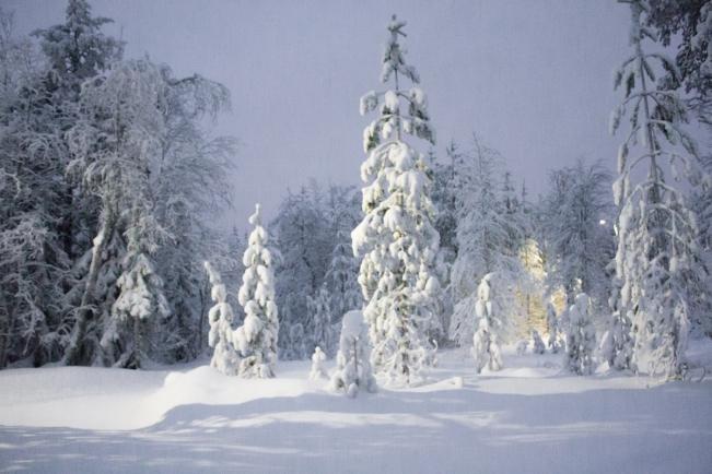 Lapland | Descubriendo el mundo con Anna26