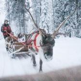 Lapland   Descubriendo el mundo con Anna27