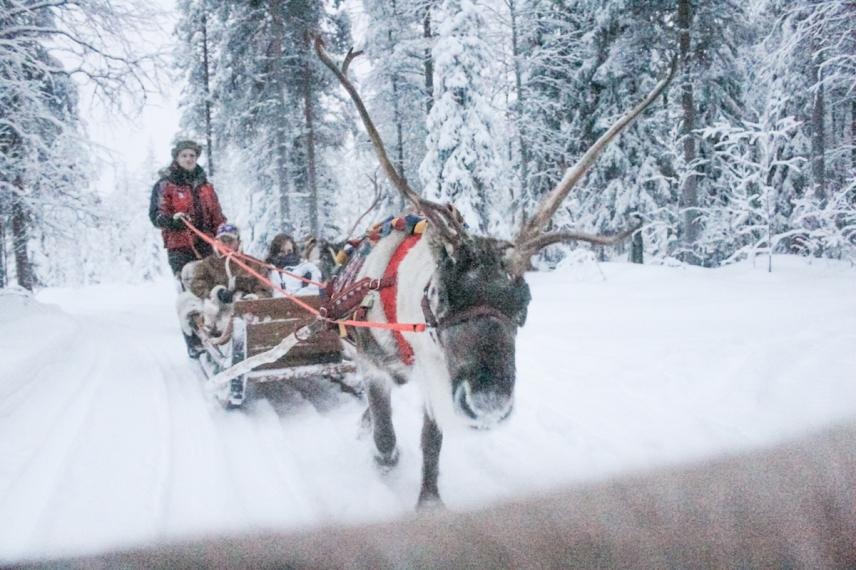Lapland | Descubriendo el mundo con Anna27