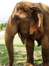 Thailand | Descubriendo el mundo con Anna83