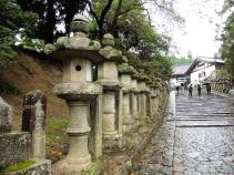 Nara, Japón | Descubriendo el mundo con Anna23