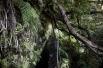 Levada Caldeirao Verde, Madeira   Descubriendo el mundo con Anna13