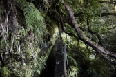 Levada Caldeirao Verde, Madeira | Descubriendo el mundo con Anna13