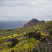 Norte de Porto Santo, Madeira | Descubriendo el mudno con Anna2
