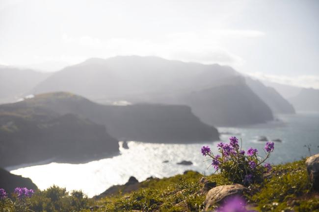 Ponta do Rosto, Madeira | Descubriendo el mundo con Anna4