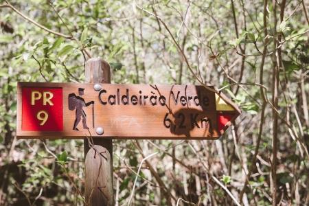 Vereda Caldeirao Verde, Madeira | Descubriendo el mundo con Anna