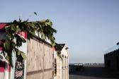 Hastings Pier, Hastings | Descubriendo el mundo con Anna7